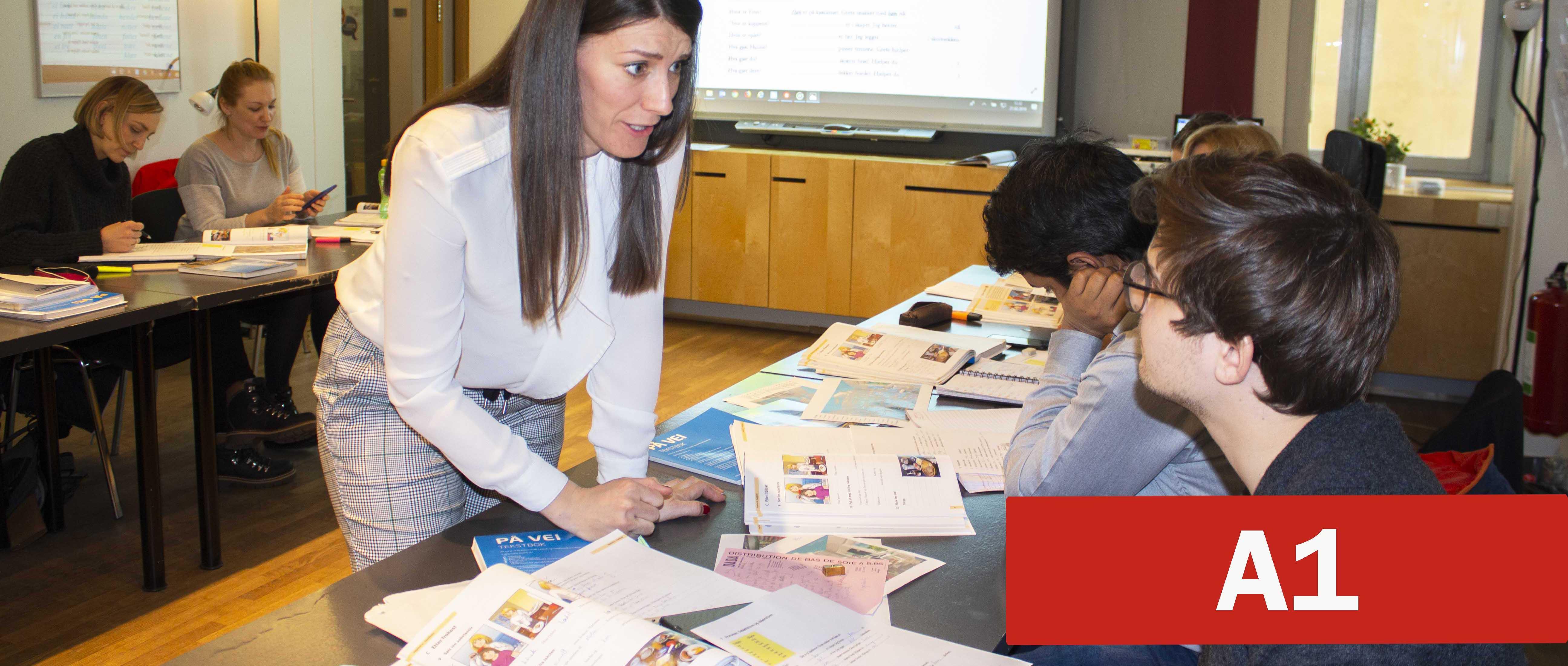 Certified provider of Norwegian courses - Alfaskolen no